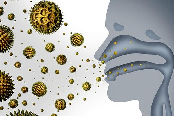 过敏性鼻炎的原因