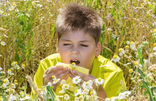 过敏性鼻炎都有哪些过敏源以及治疗方法