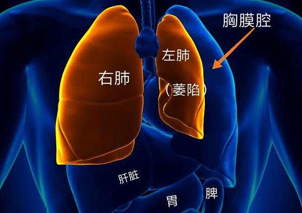 """医生大白话:""""肺气肿""""和""""老慢支""""不得不说的那些事!"""