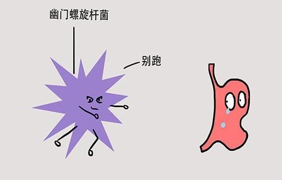 幽门螺杆菌如何根治,这些你需要知道