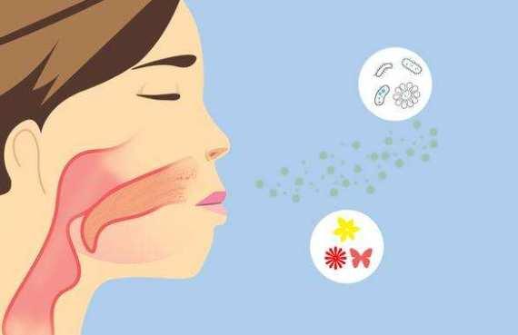过敏性鼻炎如何根治